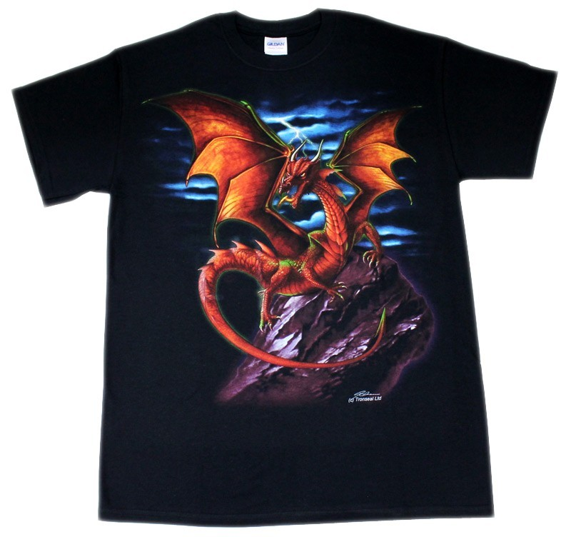 Dragon On Purple Rock Design Black Cotton T-Shirt