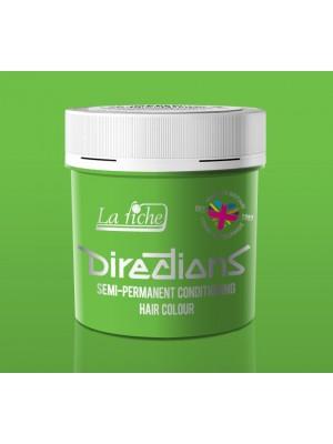 Spring Green Directions Semi Perm Hair Dye By La Riche